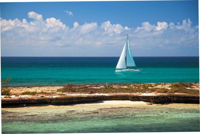 Sun Odyssey 479 │ Sun Odyssey of 14m │ Boat Segelboote Jeanneau  13249