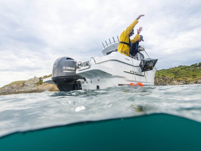 NC 695 Sport │ NC Sport of 7m │ Boat powerboat Jeanneau  18920